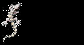 tucson-herp-logo