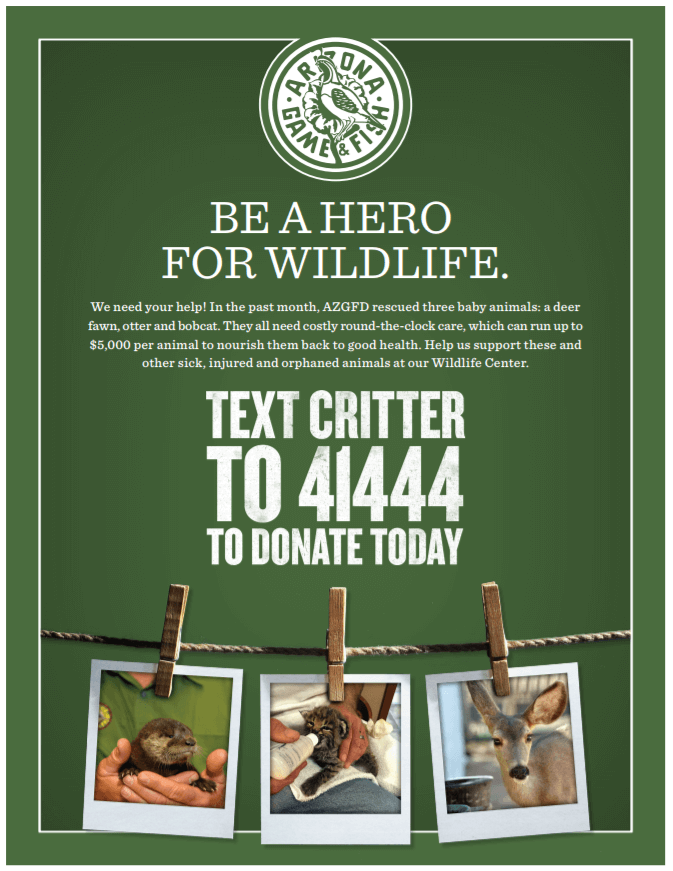 Text CRITTER to 41444 to Donate Today